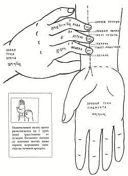 Пульсовая диагностика.jpg