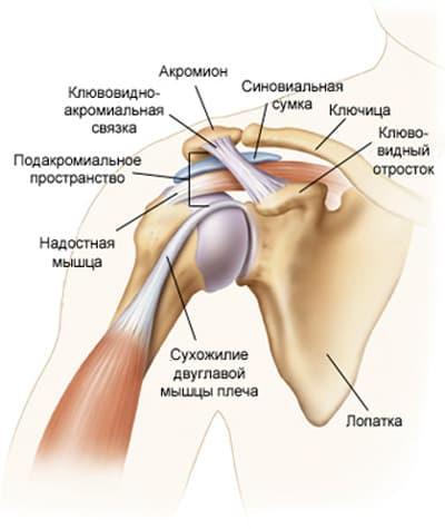Боль в плечевом суставе правой или левой руки, боль при поднятии ...
